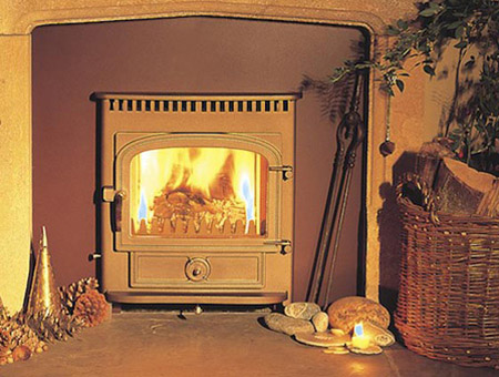 Clearview Vision Inset multi fuel / wood burning stove